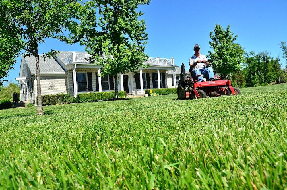 Prism Realty Management - How to Find the Right Landscaper - Best Austin Real Estate Broker - Best Austin Property Manager - Best Austin Association Manager