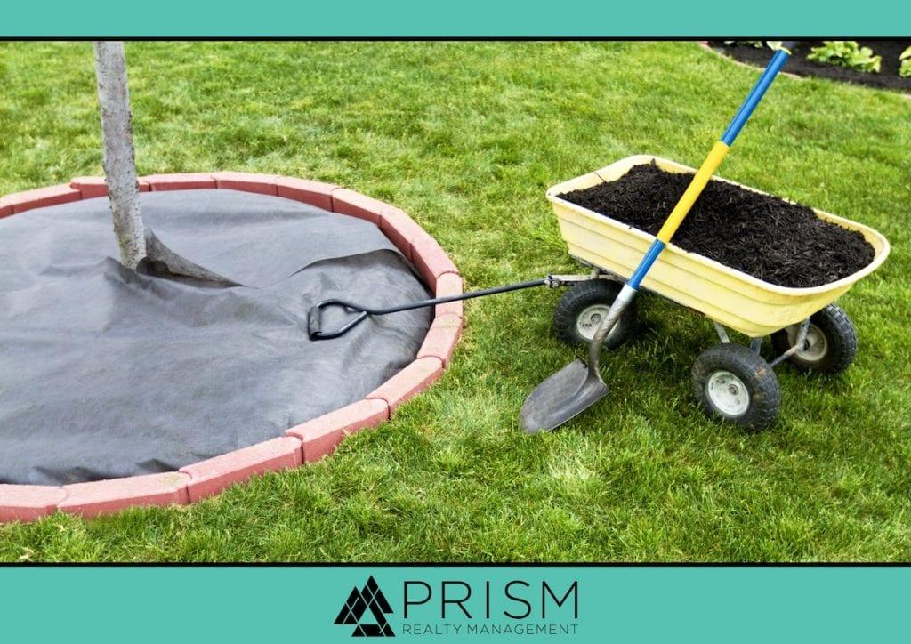 Prism Realty Management - HOA Maintenance Plans to Make Now - Best Austin Real Estate Broker - Best Austin HOA Manager - Best Austin Association Manager - Best Austin Realtors - Austin HOAs