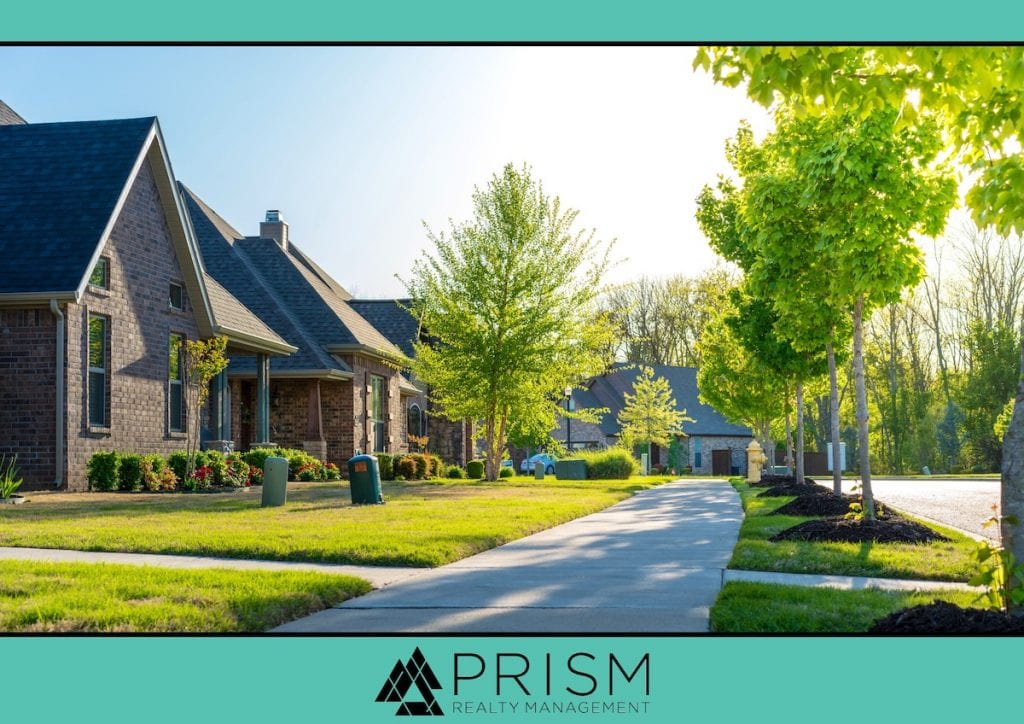 Prism Realty Management - Don't Be Shady How Your Association Manages Trees Matters - Tree Maintenance - HOA Tree Management - HOA rules on trees - HOA tree maintenance - hoa trees